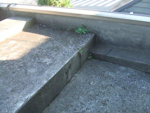 屋上・2Fベランダ防水工事